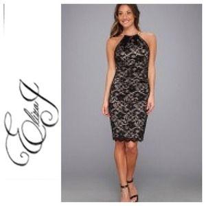 Eliza j missy lace dress