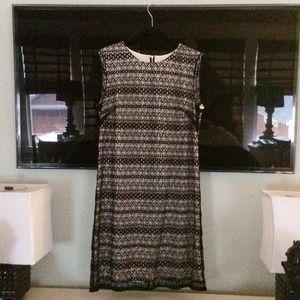 Tegan Dresses & Skirts - Tegan lace dress, NWOT