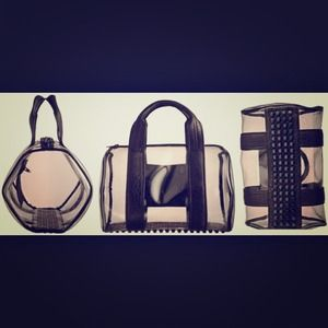 Alexander Wang clear PVC Rocco