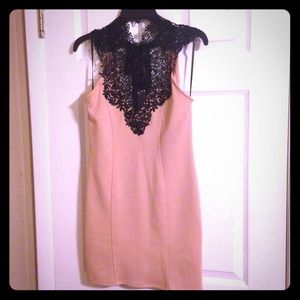 NWT Lace top and pale blush Arden B dress!