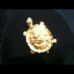 Gold tone Turtle pin