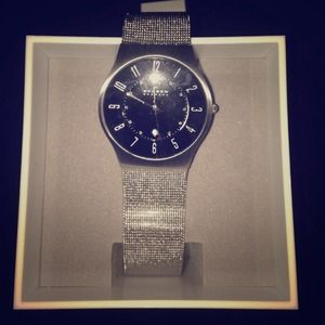 Skagen Mesh Band Watch