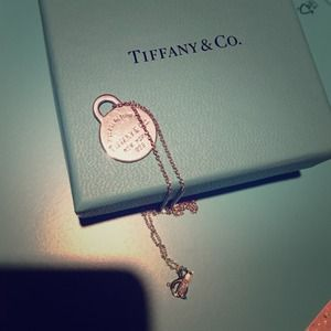 "🔶HP🔶Tiffany & Co. ""Please return to.."" necklace"