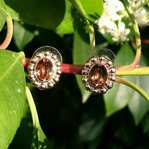 Jewelmint Jewelry - ☆HP×2☆ Jewelmint Amber Amore Earrings