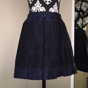 Jcrew collection Navy Skirt