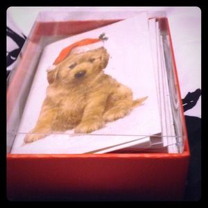 Christmas puppy cards