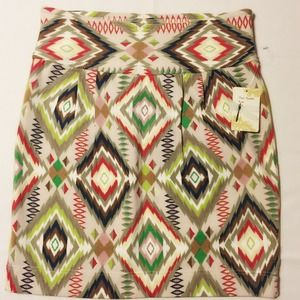 Free People Chevron Skirt