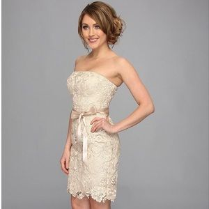 ✨Adrianna Papell Champagne Lace Sheath Dress✨