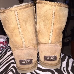 Short chestnut uggs