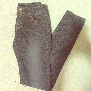 CP Jeans