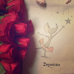 Repetto Accessories - 🍃🌿 Repetto .. My Heart Melts Thinking Of Repetto