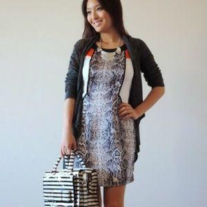 Dresses & Skirts - Chantilly viper dress