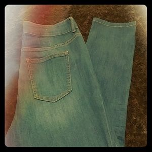 BUNDLE (2) GAP 1969 CURVY SKINNY JEAN