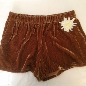 Urban Outfitters Velvet Shorts