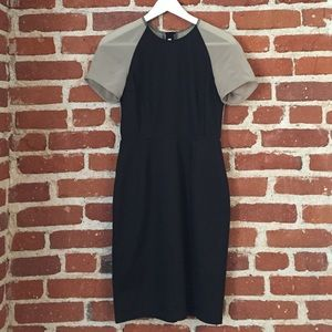 Acne Sheer Sleeve Dress