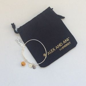 Alex and ani November crystal birthstone bracelet