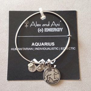 Alex & Ani Jewelry - Alex and Ani Aquarius bracelet in silver color