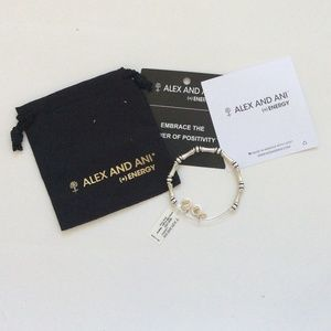 alex and ani bangle bar bamboo bracelet