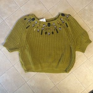Embellished Knit Crop Sweater