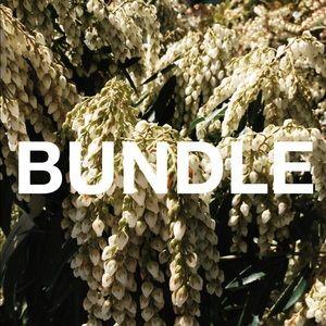 Bundle for Mackenzie