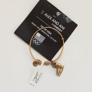 alex & ani  usa ice skating bracelet