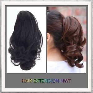 Accessories - ✨NWT DARK BROWN HAIR EXTENSION✨HOLD✨