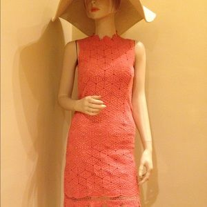 NEW Gracia Dress 💐