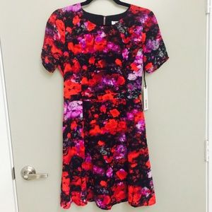 BB Dakota NWT floral dress!