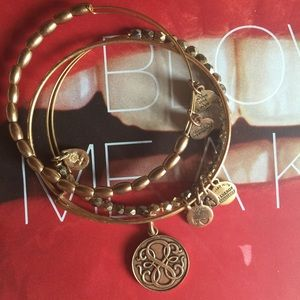 Alex and Ani Bangle Bracelet Set
