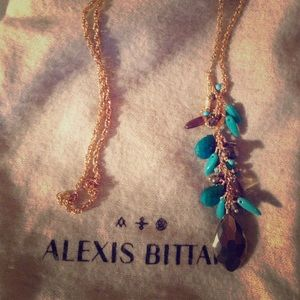 Alexis Bittar lariat necklace