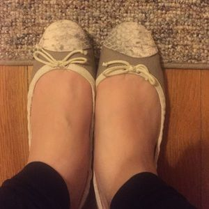 Sam & Libby Shoes - Beige flats with snake top