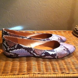 New Madewell sidewalk skimmers in python print