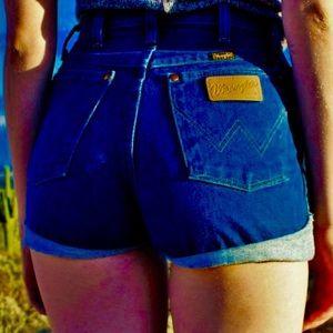 I wasted LEE shorts
