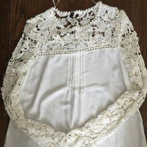 Zara Basic Tops - Zara Basic sheer/lace blouse