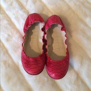 Giuseppe Zanotti Shoes - 🌷Giuseppe Zanotti Flats🌷