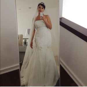 NWOT Embellished wedding dress + Veil
