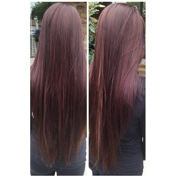 Salon Accessories 24 Inch Red Brown Human Hair Extensions Clip In