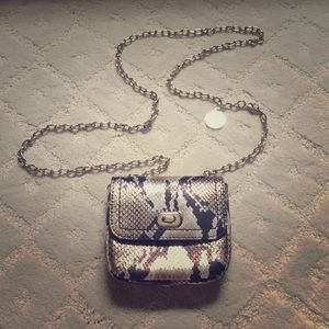 BR tiny purse