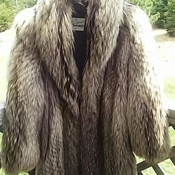 91 Off Joseph Furs Outerwear Beautiful Finnish Tanuki
