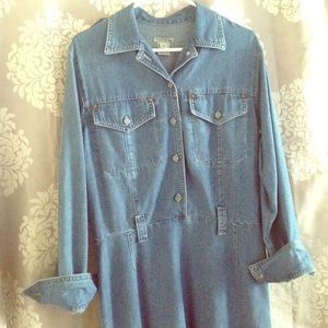 Super Cute Democracy Denim Dress