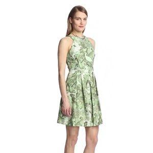 Eva Franco Dresses & Skirts - 🆕 Eva Franco Nova Parakeet Dress