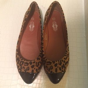 Charles albert Shoes - SOLD ||  New leopard print pointy flats 8.5