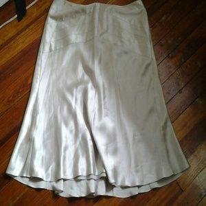 Bueatiful Silk Skirt