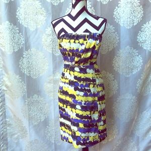 The Limited Midi Strapless Dress Size 2