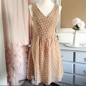 Boutique Tan Polka Dot Dress