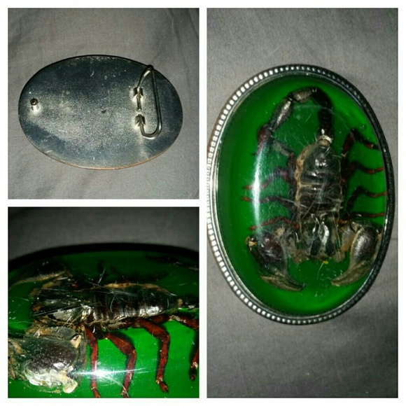 WHITE BACKGROUND BELT BUCKLE REAL SCORPION