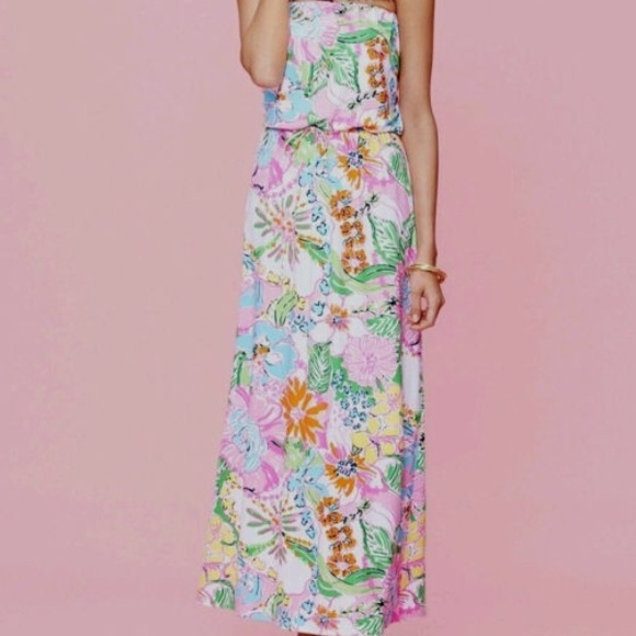 1e7a22de7d Lilly for Target Nosie Posey Maxi Dress
