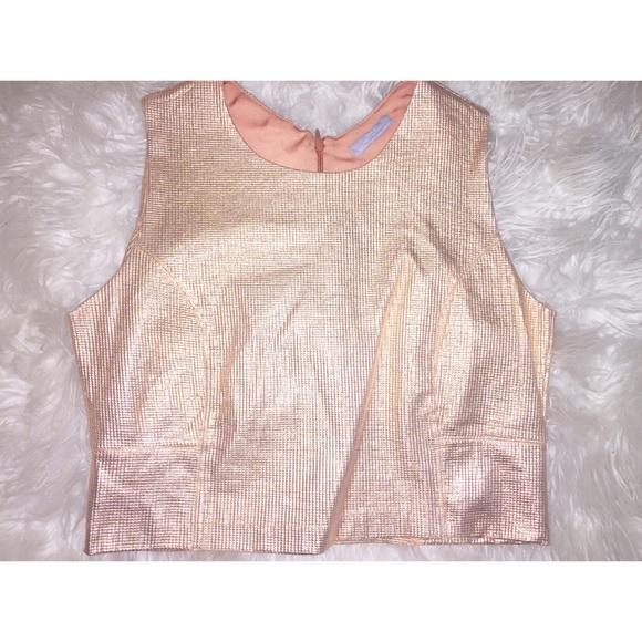 Zara Tops - Zara Metallic Crop Top