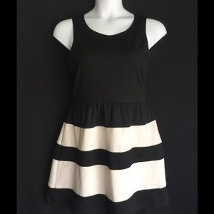 Dresses & Skirts - 👗FINAL PRICE👗NWOT Black and White Fit and Flare