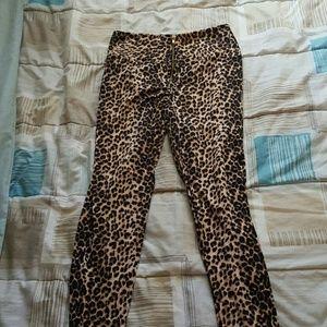 Pants - Bundle